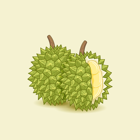 Durianfrucht Standard-Bild - 67094960