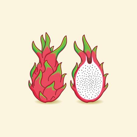 Dragon fruit illustration Çizim
