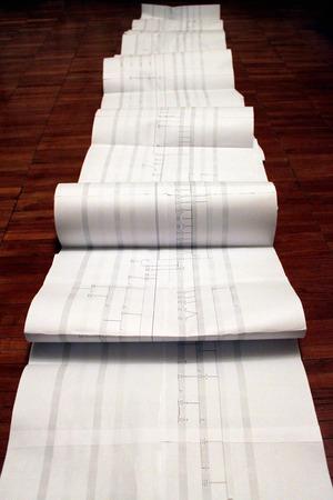 genealogical tree on the sheet photo