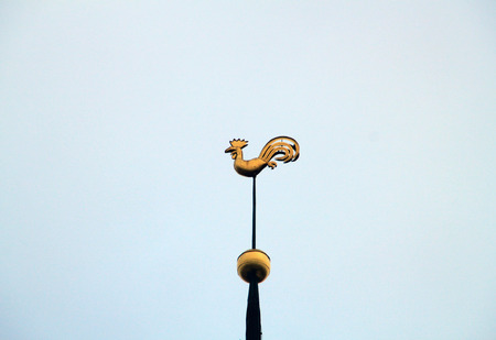 spire: RIGA, LATVIA - JANUARY 24, 2015: rooster weathervane on the spire of Riga Cathedral on January 24, 2015 in Riga.