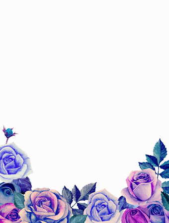 Blue and purple roses. Watercolor flowers bouquet. Greeting card design template Stock Photo