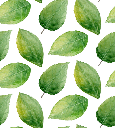 Green leaves pattern. Nature background. Watercolor illustration Imagens