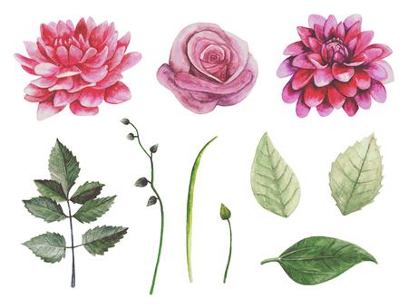 Boho flowers. Botanical clip art. Watercolor retro floral Imagens
