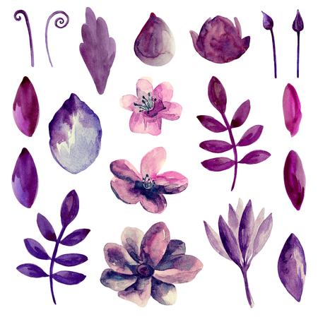 Watercolor purple and pink flowers clipart. Violet floral clip art Imagens