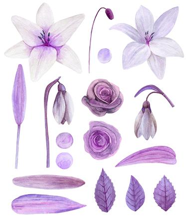 Purple flowers clipart. Watercolor lilac floral bouquet clip art Imagens