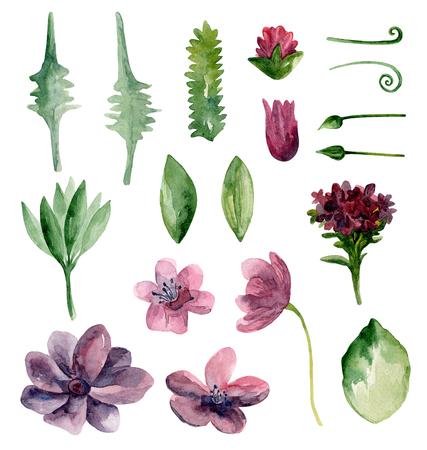 Watercolor purple flowers clipart. Botanical violet clip art set Imagens