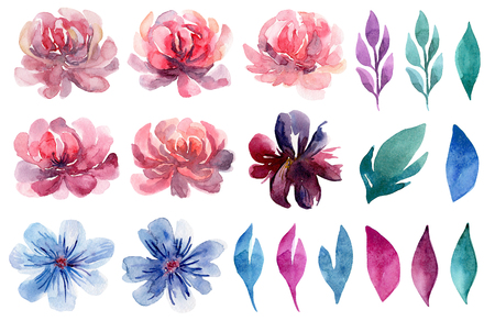 Watercolor floral clip art set. Pink flowers painted illustration collection