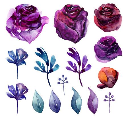 Watercolor purple flowers clip art. Lilac and blue floral Imagens