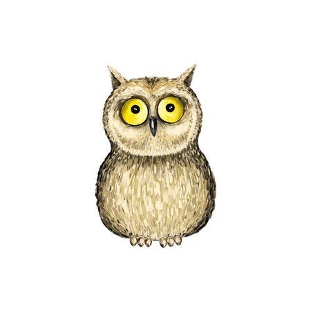Owl on white background. Animal isolated illustration Imagens