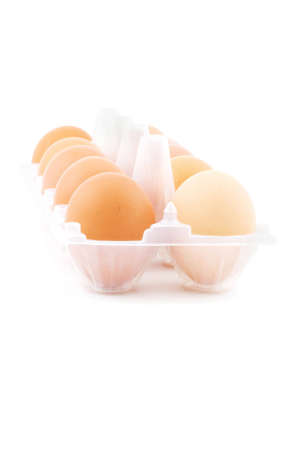 Isolated photo of some eggs in the white box