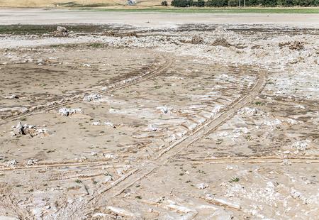 Solonchak - saline soils