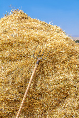 A pile of straw on a farm landscape