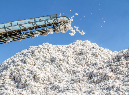 A big pile of raw cotton against the sky in a cotton plant
