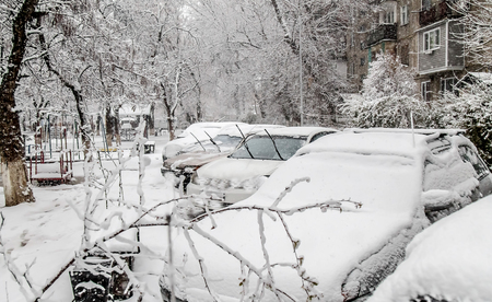 Cars under snow in the yard in the city