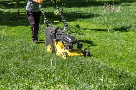 Mowing green grass in the park with a lawnmower