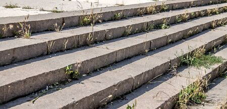 Overgrown old granite steps close-up