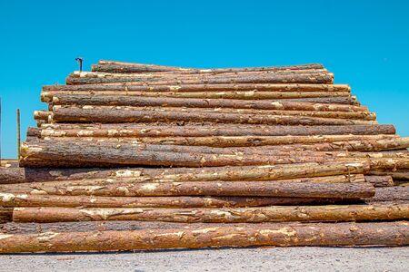Stacks of wooden logs as background 版權商用圖片