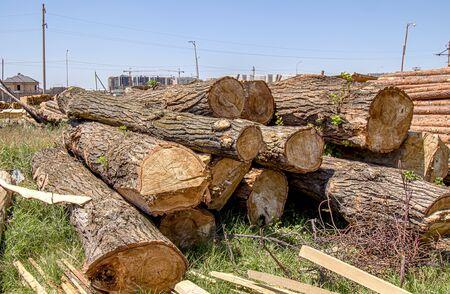 Stacks of wooden logs as background 版權商用圖片 - 128774855