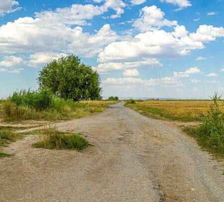 Dirt country road in Asia Reaching into the sky. Rural landscape in Asia 写真素材