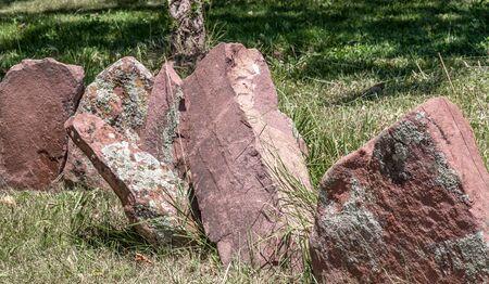 Stones among green grass. Garden of stones