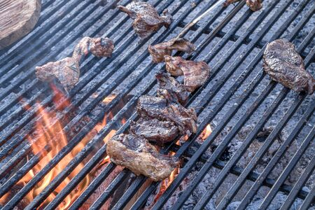 Cooking grilled meat pieces outdoors Banco de Imagens