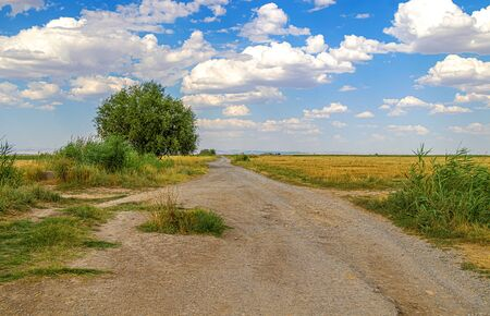 Dirt country road in Asia Reaching into the sky. Rural landscape in Asia Banco de Imagens