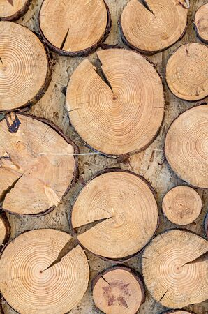 The wooden structure of the saw cut of the tree as a background 版權商用圖片 - 128775355