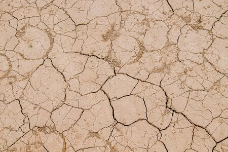 Dry cracked earth as a background close-up. Environmental disaster. Drought. Archivio Fotografico
