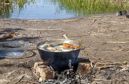 Cooking fish soup fish soup in the fire in nature 写真素材