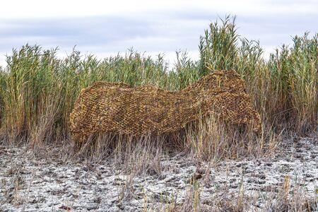 Filet de camouflage roseau dans la nature