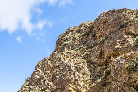 Rocks and vegetation on rocky stones in Kazakhstan 写真素材