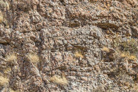 Rocks and vegetation on rocky stones in Kazakhstan Zdjęcie Seryjne