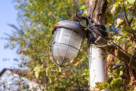 old street lamp among plants