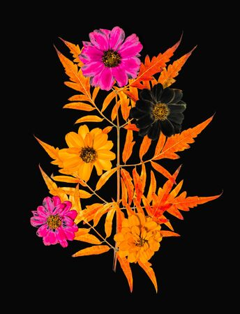 Yellow-orange autumn carved leaves and autumn bright flowers isolated on white background