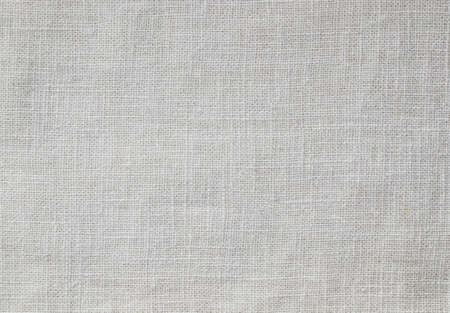 White cotton fabric as background.