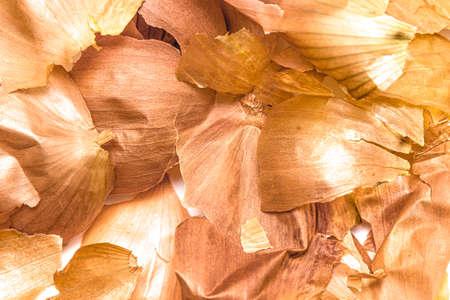 Onion husk close-up on a white background.
