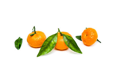 Bright ripe tangerines with green leaves on a white background. Standard-Bild