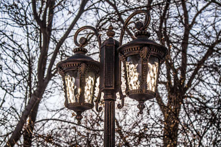 Street lighting lamps in a city park against the sky and trees.