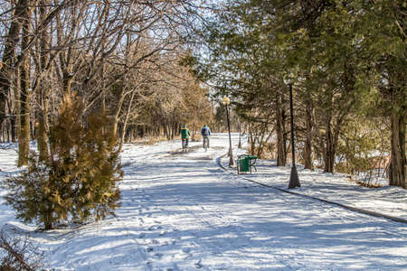 Winter cycling in a city park. Landscape.