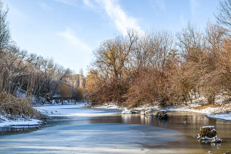 Trees on the shore of a frozen lake in a city park. Landscape.