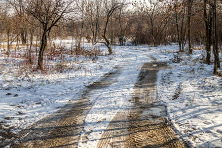 Melting snow on a country road in the forest Standard-Bild
