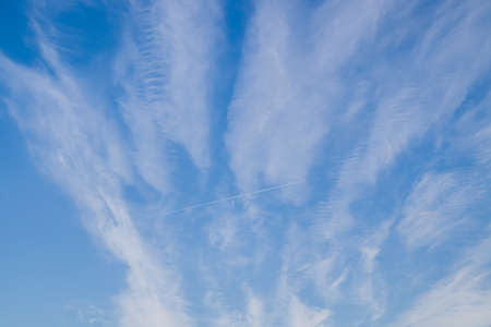 White cirrus clouds on a blue sky as a background.