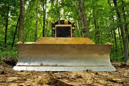 Bulldozer staande in bos voor ontbossing Stockfoto