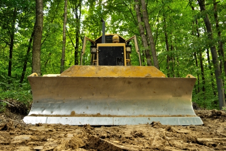 deforestation: Bulldozer standing in forest for deforestation