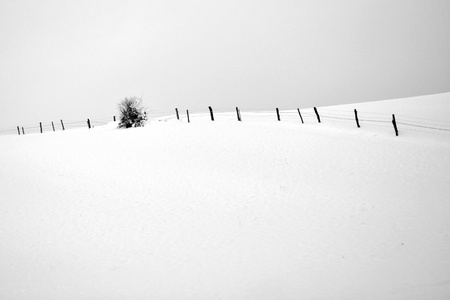 Black and white photo of winter landscape with fence and tree