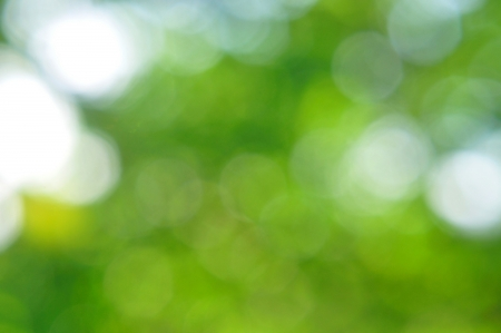 Natural green background Stock Photo - 19628744