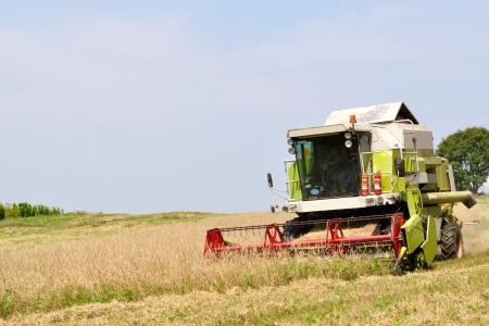 Modern combine in the field during harvesting with space on left side  Agriculture and Farming Collection  photo