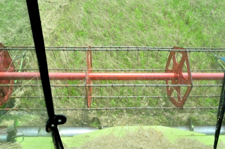 View from the combine harvester in the wheat field during harvesting  photo
