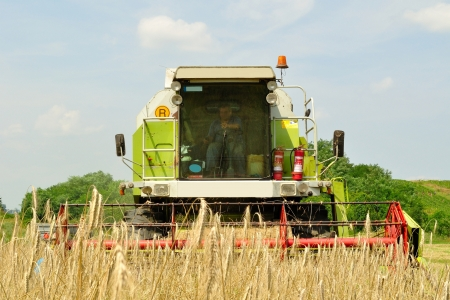 Front view of modern combine harvester in the wheat field during harvesting photo