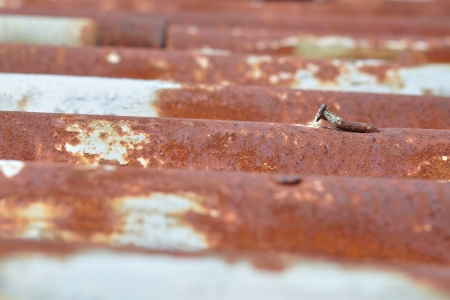 Detail view of old rusty corrugated metal sheet with rusty nail